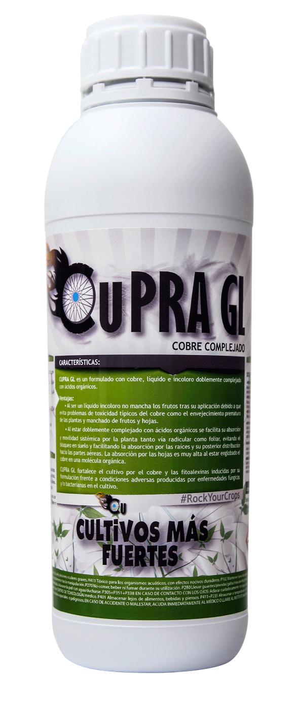 cupra-gl-1L