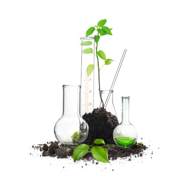 نجمع العلم والطبيعة من أجل خلق محاليلنا الخاصة